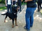 Spaziergänge Tierparkbesuche